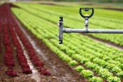 Impianto di irrigazione moderno - particolari Fotografia Stock Libera da Diritti