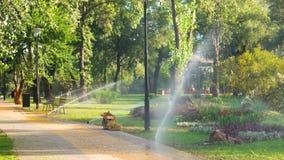 Impianto di irrigazione nel parco della città stock footage