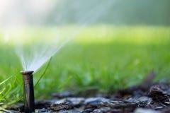 Impianto di irrigazione nella funzione Immagine Stock