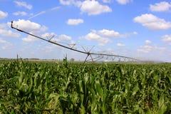 Impianto di irrigazione per agricoltura Immagine Stock