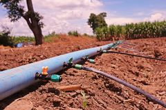Impianto di irrigazione per il raccolto di agricoltura Immagine Stock Libera da Diritti