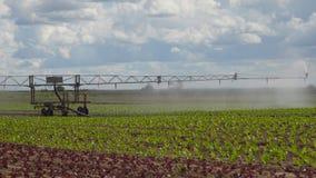 Impianto di irrigazione su terreno agricolo Immagine Stock