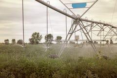 Impianto di irrigazione sul campo verde Immagini Stock