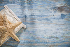 Impianto di lavaggio del corpo delle stelle marine sul raggiro di sanità dello spazio della copia del bordo di legno Fotografia Stock