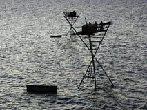 Impianto di perforazione di pesca del pescatore Immagini Stock Libere da Diritti