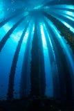 Impianto offshore subacqueo fotografia stock libera da diritti