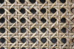Impianto a scacchiera vuoto Immagini Stock