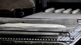 Implementazione dei grissini sul forno del tappeto stock footage
