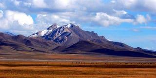 Imponerande föreställning landskap Royaltyfria Foton