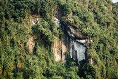 Imponerande föreställning vaggar framsidan med grön trädbakgrund, det asia berget Royaltyfria Bilder