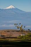 Imponierender Cotopaxi-Vulkan, Ecuador Lizenzfreie Stockfotografie