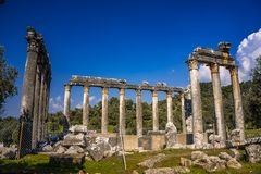 Imponująco świątynia Zeus Lepsinos Euromus Euromos Antyczny miasto, Milas, Mugla, Turcja zdjęcie stock