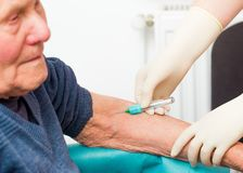 The Importance of Blood Testing in Elderly Royalty Free Stock Images