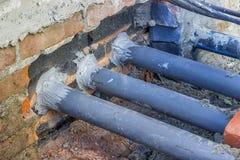 Importance de construction à l'épreuve des rongeurs, rongeur provisoire approprié Image libre de droits