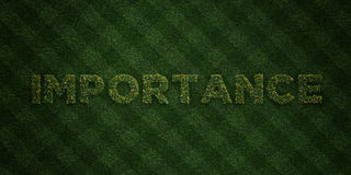 IMPORTANCE - fresh Grass letters with flowers and dandelions - 3D rendered royalty free stock image Stock Photo