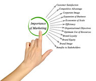 Importance of Marketing. Presenting diagram of Importance of Marketing stock images