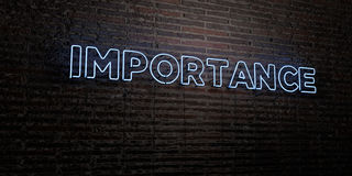 IMPORTANCE -Realistic Neon Sign on Brick Wall background - 3D rendered royalty free stock image Royalty Free Stock Image