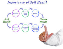 Importance of Soil Health. Presenting Importance of Soil Health royalty free stock photo