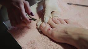 Importando-se com o pedicure dos pés da menina, polimento, luzes bonitas Pedicures no salão de beleza Os cuidados do mestre para  filme