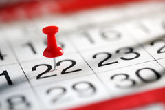 Important date. Thumbtack in calendar concept for important date or busy day Royalty Free Stock Image