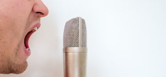 Important. Man screaming in the microphone Royalty Free Stock Photos
