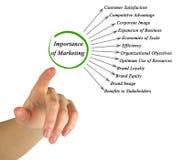 Importanza dell'introduzione sul mercato Immagine Stock