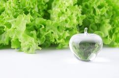 Importe-se sua saúde Imagem de Stock