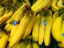 Imported bananas Royalty Free Stock Photo
