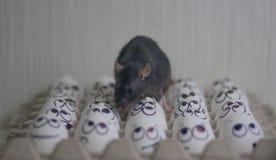 Imposición de una idea ante las masas Concepto negro El rat?n imagenes de archivo