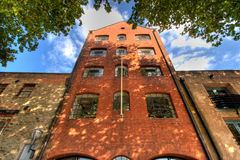 Imposing brick building rises into sky. With leaves framing Royalty Free Stock Photo