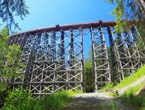 Kinsol Trestle from Trail below the Bridge, Vancouver Island, Canada. The imposing historic Kinsol Trestle across the Koksilah River on southern Vacouver Island Royalty Free Stock Images