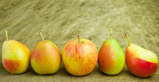 The Imposter. There is an imposter among the pears Stock Photos