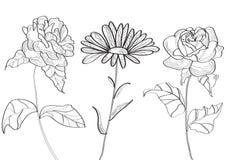 Imposti con i fiori Fotografia Stock