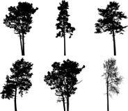 Imposti gli alberi isolati - 3 Immagine Stock