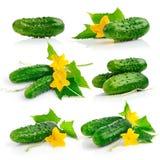 Imposti la frutta del cetriolo con i fogli Fotografia Stock