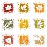 Imposti le icone dei fogli di autunno Immagine Stock