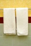 Imposti per una stanza da bagno Fotografie Stock Libere da Diritti