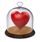 Impregnable heart in a glass case Stock Photography