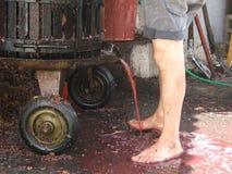 Imprensa da uva do Cretan Imagem de Stock