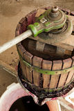 Imprensa de vinho Fotografia de Stock