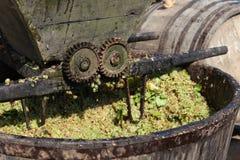 Imprensa de vinho fotografia de stock royalty free