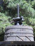 Imprensa de vinho antiga no Chile fotografia de stock royalty free