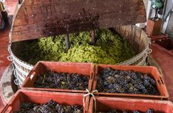 Imprensa de vinho de Chardonnay Pinot Noir Imagens de Stock Royalty Free