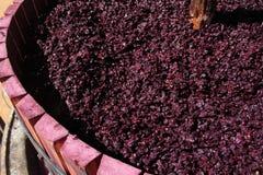 Imprensa de vinho com pomace da uva vermelha fotos de stock