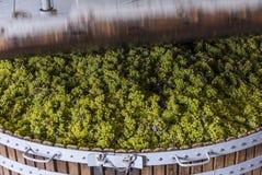 Imprensa de vinho de fechamento em Dizy Foto de Stock