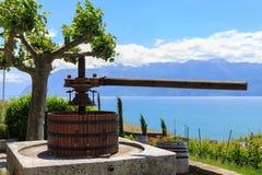 Imprensa de vinho no vinhedo foto de stock