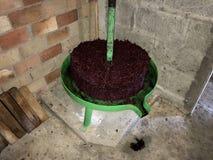 Imprensa de vinho verde com uva esgotada foto de stock
