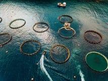 Impresa di piscicoltura di color salmone con le gabbie di galleggiamento Siluetta dell'uomo Cowering di affari fotografie stock libere da diritti