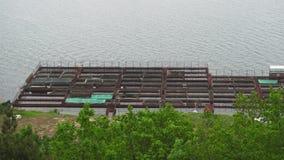Impresa di piscicoltura dello storione del pontone su un open water video d archivio