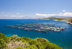 Impresa di piscicoltura in Grecia Fotografia Stock Libera da Diritti